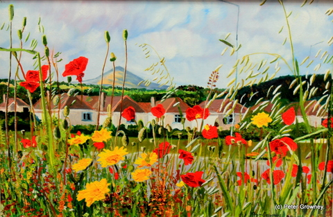 poppies-and-daisies4